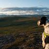 Hardangervidda 2009 (Dyranutområdet)
