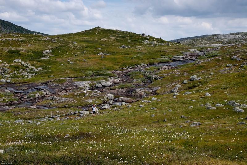 Ved Kjeldebu, Hardangervidda 2009