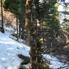 6  G Windy Trail