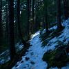 17  G Snowy Trail V