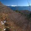 83  G Hood and Trail Sun V