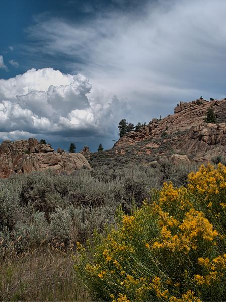 Hartman Rocks, Gunnison, Colorado 8.17.2016