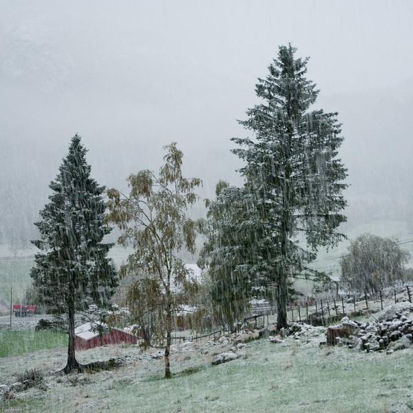 Early autumn snow