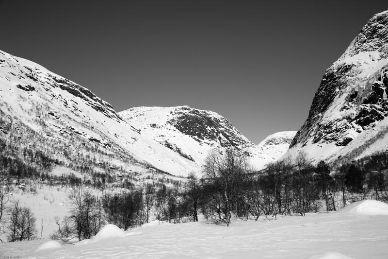 Gjerlandsdalen ved Frøyslandsstølen