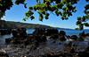 Somewhere on the road to Hana. Hawaii...