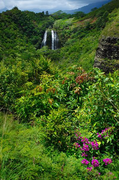 'Opaeka'a Falls_Kauai_waterfall_Opaekaa_4658
