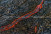 31.  A Ribbon Of Lava