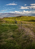 38.  Late Afternoon View Toward Mauna Kea