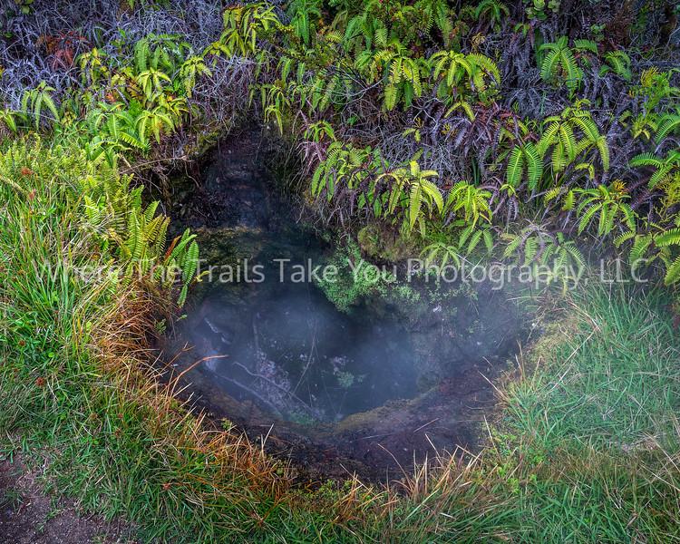28.  A Trailside Steam Hole