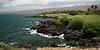 Mauna Kea #3