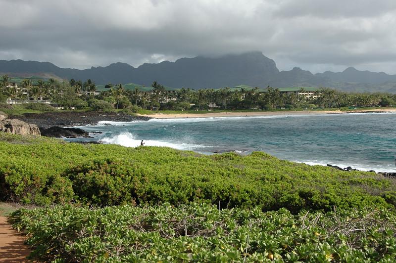 Hawaii-0029