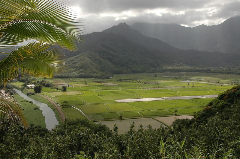 Hawaii-0588