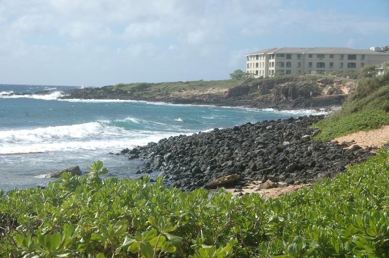 Hawaii-0096