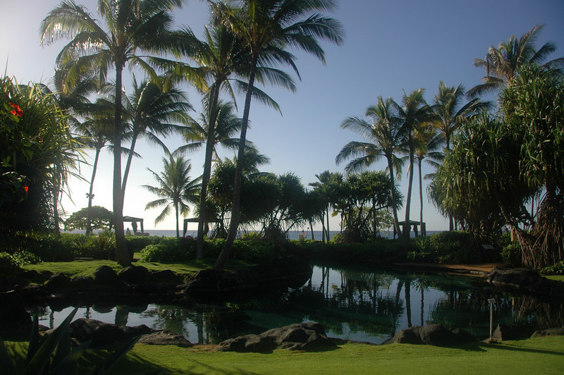 Hawaii-0271
