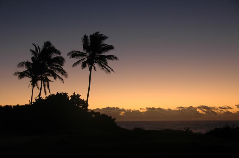 Hawaii-1047