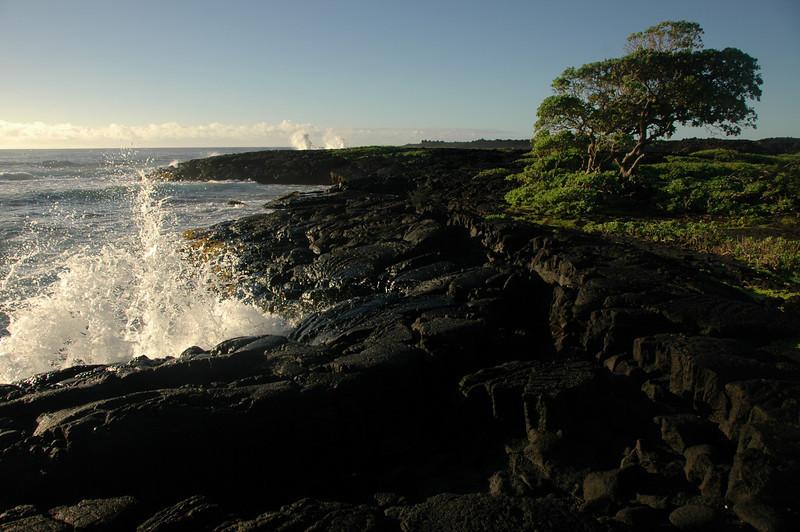 Hawaii-1062