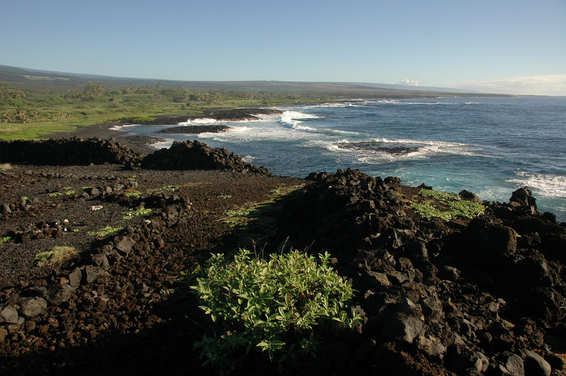 Hawaii-1115
