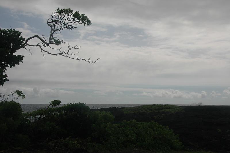 Hawaii-1019