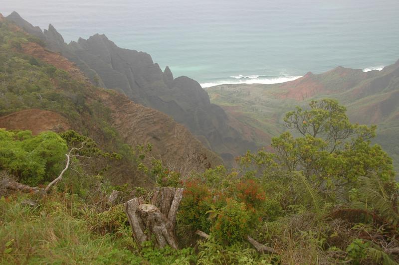 Hawaii-0363