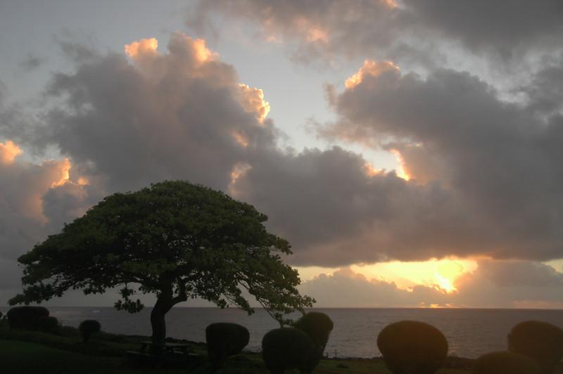 Hawaii-0151