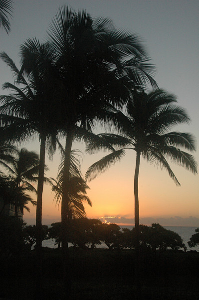 Hawaii-0235