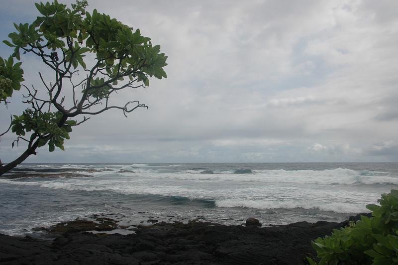 Hawaii-1036