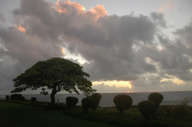 Hawaii-0149