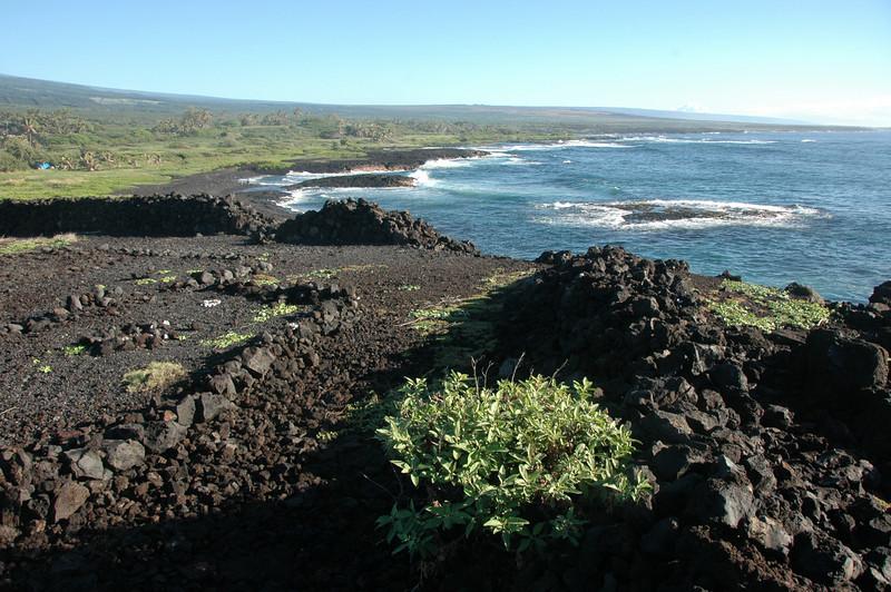 Hawaii-1112