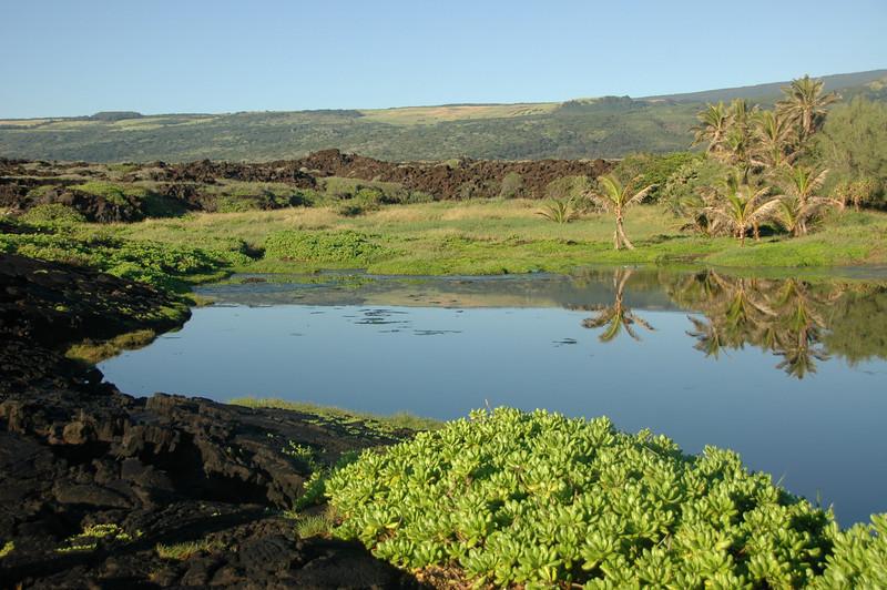 Hawaii-1090