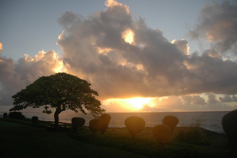 Hawaii-0157