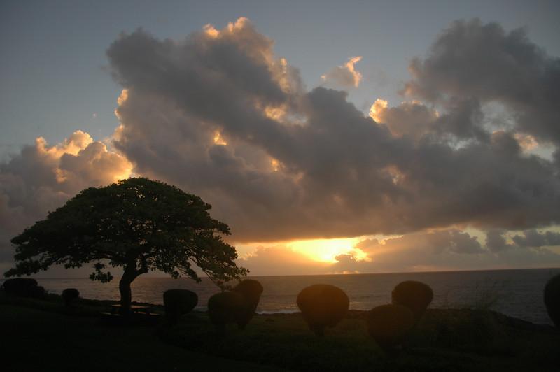 Hawaii-0155
