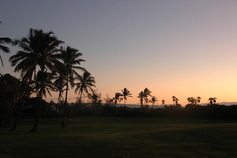 Hawaii-1052