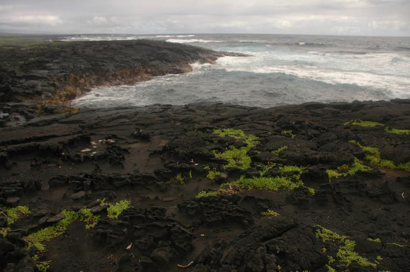 Hawaii-1028