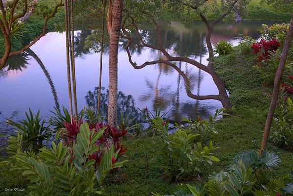 Poipu Lagoon