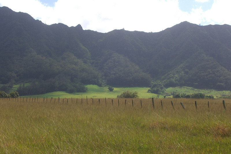 Hawaii-C-0255