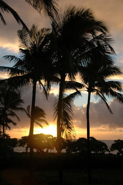 Hawaii-0018