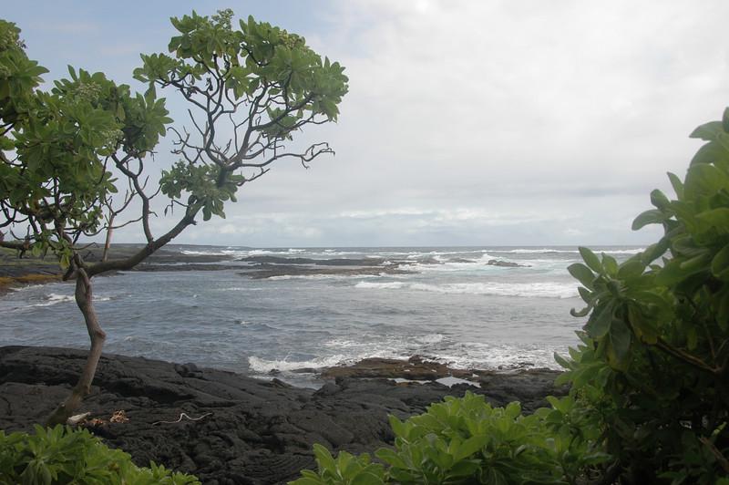 Hawaii-1035