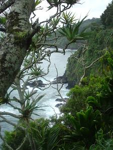 Hana, Maui Dec. 2007