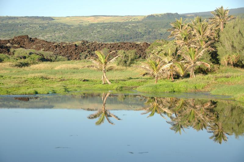 Hawaii-1083