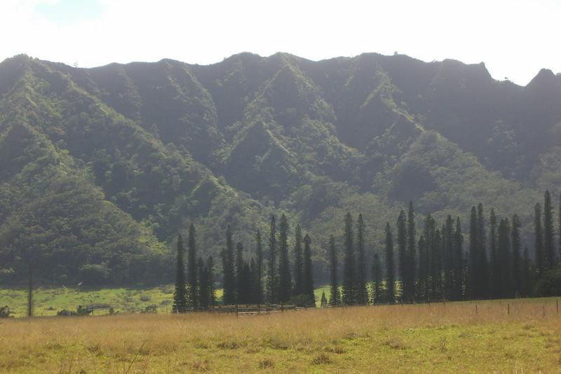Hawaii-C-0254