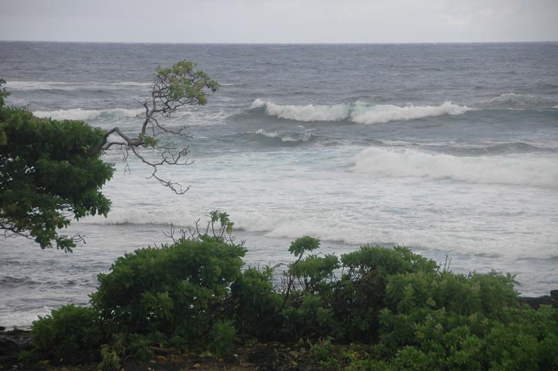 Hawaii-1025