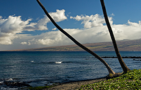 The Kohala Coast