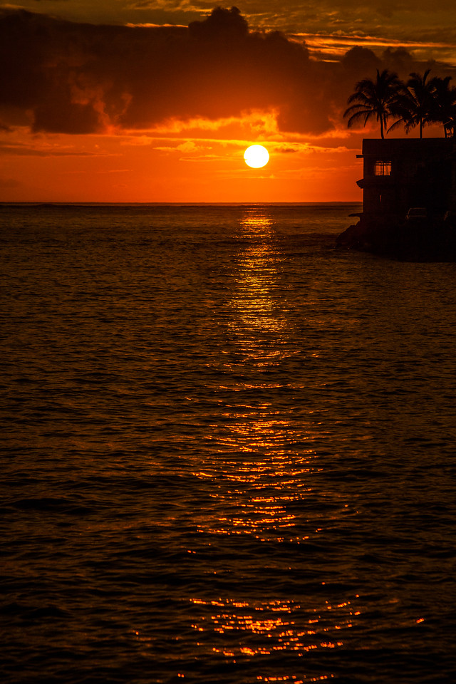 An orange sun rises over the calm ocean waters off the coast with palm trees in the foreground