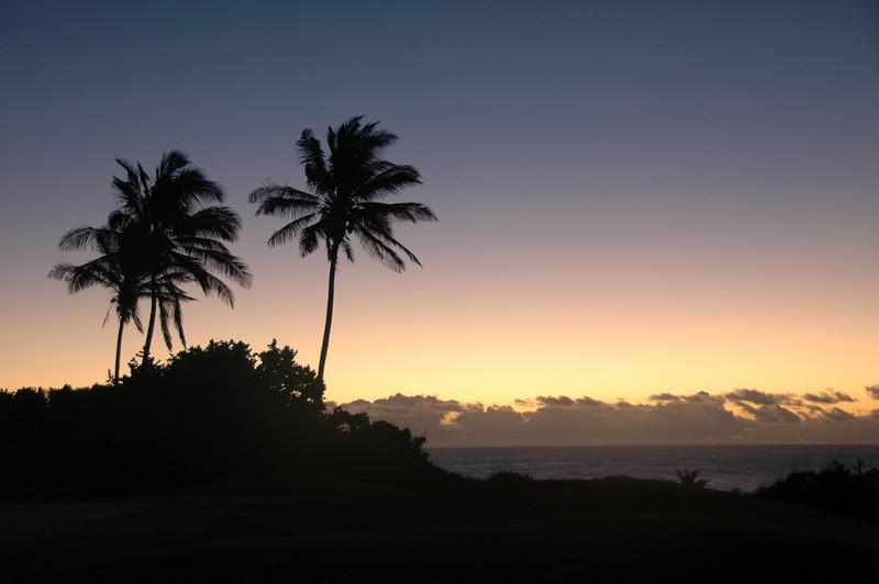 Hawaii-1046