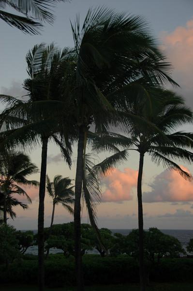 Hawaii-0489