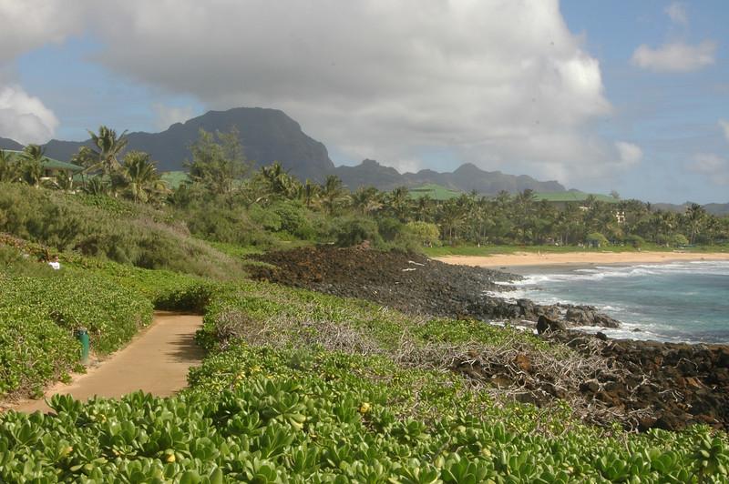 Hawaii-0100