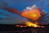 """""""Lava Wild"""" - Hawaii"""