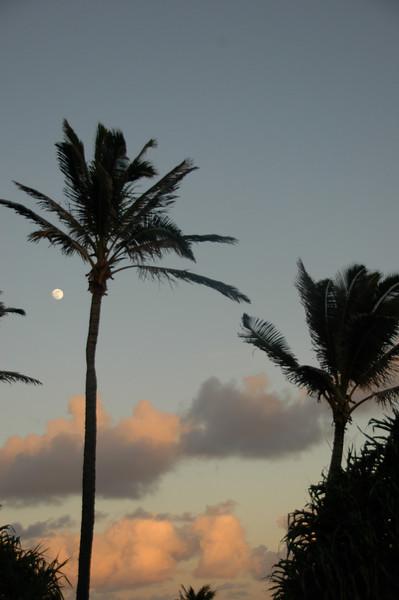 Hawaii-0488
