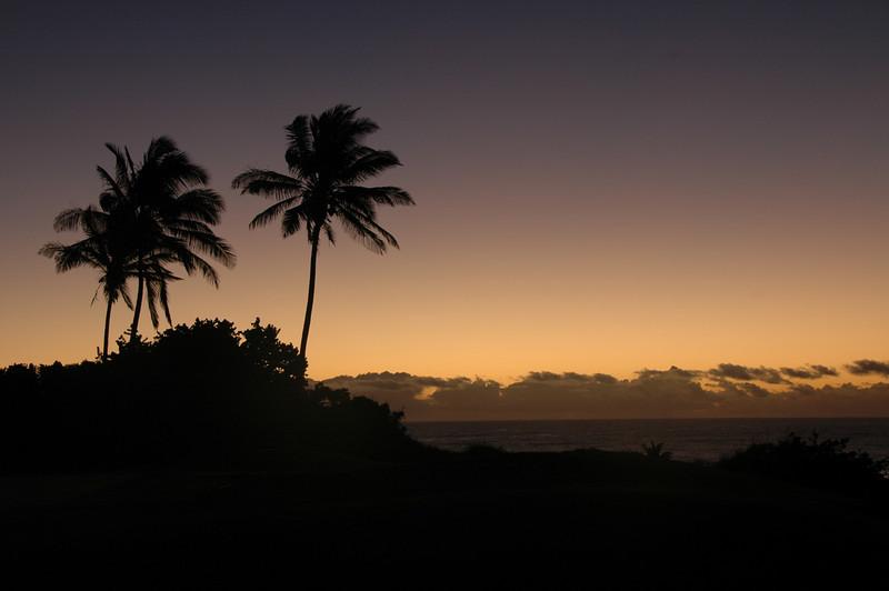 Hawaii-1049