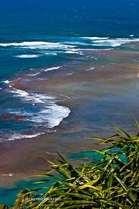 Hawaii-4334